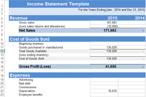 word 2007 income statement